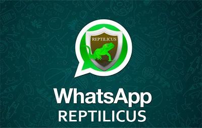 Как отследить WhatsApp переписку