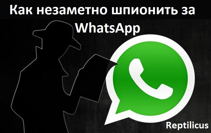 Как незаметно шпионить за WhatsApp через телефон?