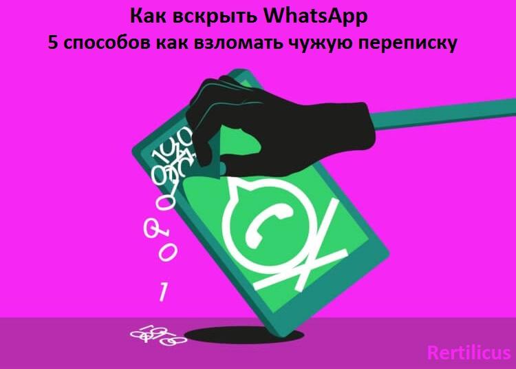 Как вскрыть WhatsApp: топ 5 способов