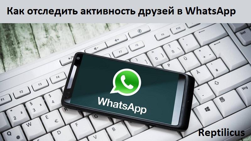 Как отследить активность друзей в WhatsApp: обзор